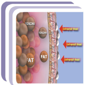 cellular-benefits